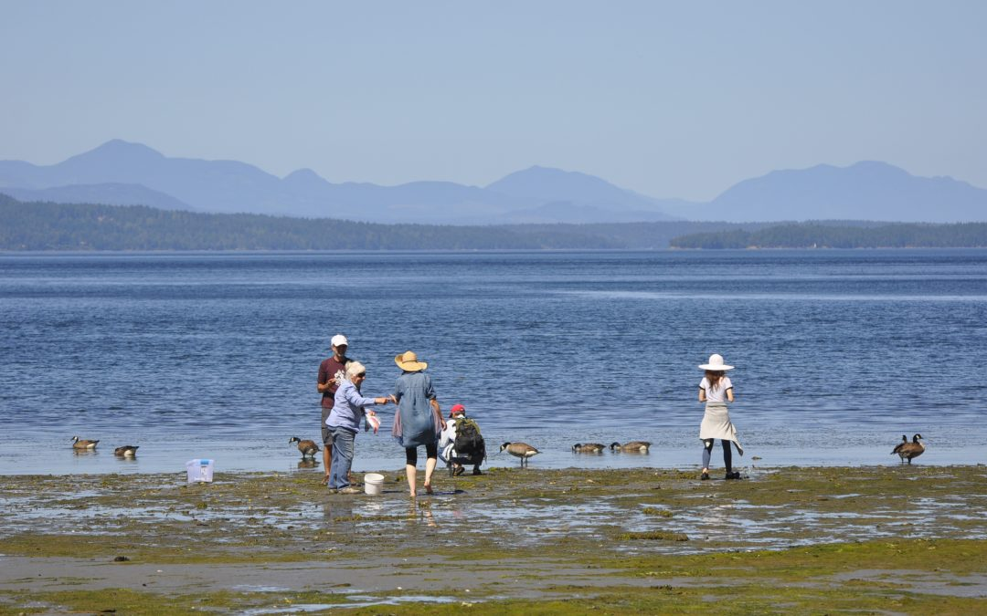 Community Marine Biology